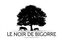 logo_bigorre